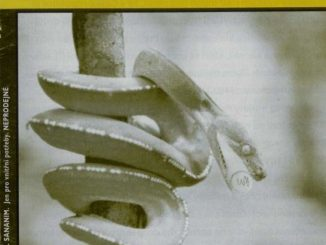 Dekontaminace I/2002