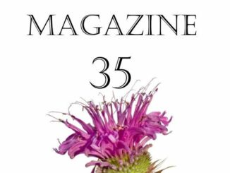 Street Magazine 35