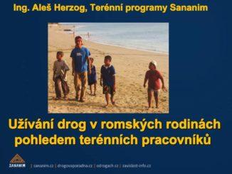 Prezentace Užívání drog v romských rodinách pohledem terénních pracovníků Aleše Herzoga - 2013