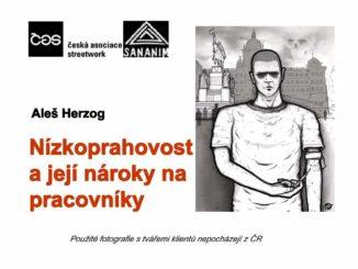Prezentace Aleše Herzoga (pod hlavičkou České asociace streetwork) Etická dilemata v nízkoprahových službách na konferenci JABOK v roce 2013